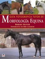 Guía fotográfica tutor de morfología equina – ISBN 978-84-7902-412-3. Ediciones Tutor
