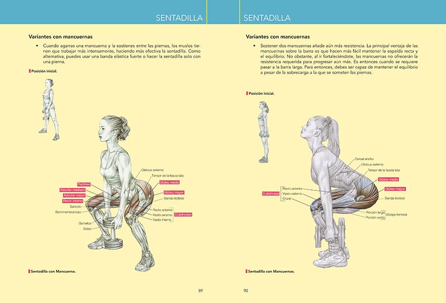 Anatomía del entrenamiento de la fuerza para mujeres | Ediciones Tutor