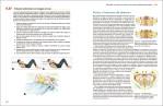 4-Acondicionamiento-fisico-para-la-danza-978-84-16676-86-6 - copia