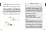 4-Anatomía-del-Pilates-978-84-16676-95-8