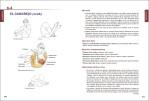 5-Anatomía-del-Pilates-978-84-16676-95-8