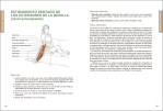 3-Anatomia-de-los-estiramientos.-Nueva-edicion-ampliada-y-actualizada-978-84-16676-99-6