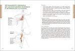 5-Anatomia-de-los-estiramientos.-Nueva-edicion-ampliada-y-actualizada-978-84-16676-99-6