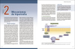 4-Ciencia-y-desarrollo-de-la-hipertrofia-muscular.-Nueva-edición-ampliada-y-actualizada-978-84-18655-01-2