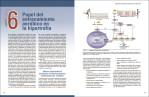 5-Ciencia-y-desarrollo-de-la-hipertrofia-muscular.-Nueva-edición-ampliada-y-actualizada-978-84-18655-01-2