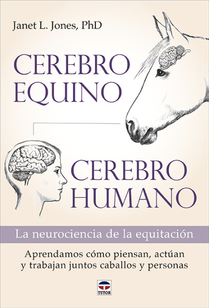 CEREBRO EQUINO CEREBRO HUMANO.indd