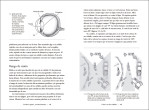 5-Cerebro-equino,-cerebro-humano-978-84-1865504-3