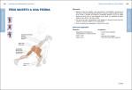 4-Anatomia-del-entrenamiento-funcional-978-84-18655-07-4